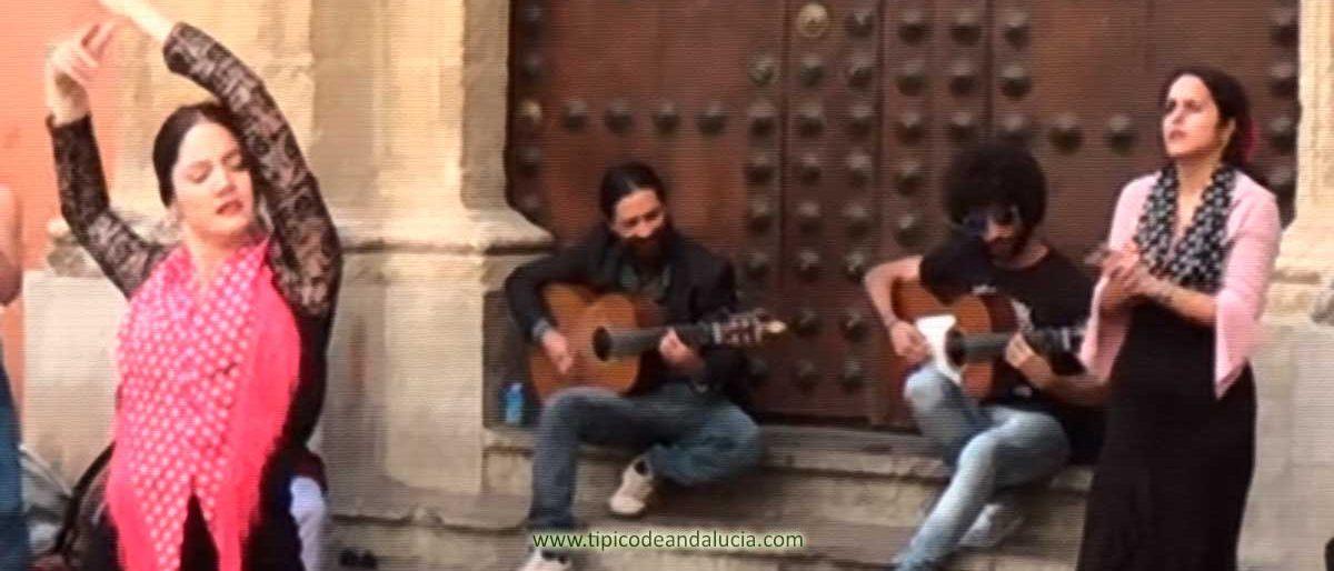 toque cante y baile tradicional flamenco andalucia